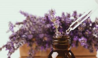 巴赫花精專欄〈6〉好文分享-從花精療法談情緒排毒